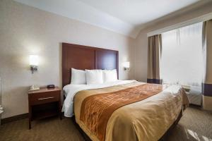 Comfort Inn Elko, Hotels  Elko - big - 4