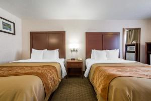Comfort Inn Elko, Hotels  Elko - big - 2