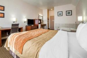 Comfort Inn Elko, Hotels  Elko - big - 3