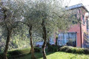 Casa della Cornice, Dovolenkové domy  La Spezia - big - 8