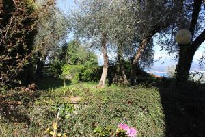 Casa della Cornice, Dovolenkové domy  La Spezia - big - 10