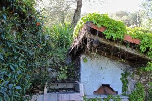 Casa della Cornice, Dovolenkové domy  La Spezia - big - 29
