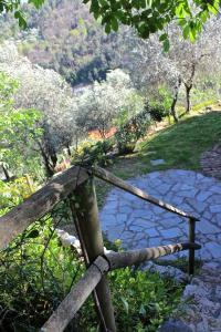 Casa della Cornice, Dovolenkové domy  La Spezia - big - 33