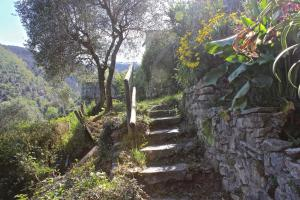 Casa della Cornice, Dovolenkové domy  La Spezia - big - 39