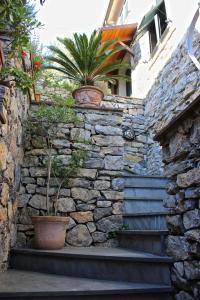 Casa della Cornice, Dovolenkové domy  La Spezia - big - 53