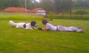 Boråkra Bed & Breakfast, Отели типа «постель и завтрак»  Карлскруна - big - 53