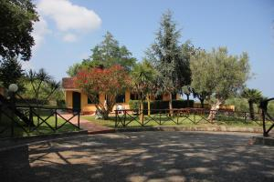 Borgo San Cosmo Tropea, Bed and breakfasts  Brattirò - big - 62