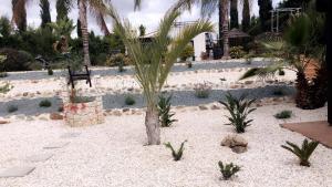 Villa Anna Maria, Vily  Coral Bay - big - 37