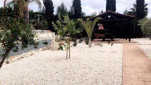 Villa Anna Maria, Vily  Coral Bay - big - 36