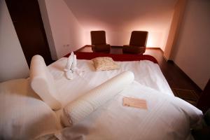 Hotel Ciric, Отели  Яссы - big - 18