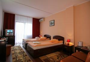 Hotel Ciric, Отели  Яссы - big - 17