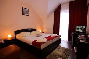Hotel Ciric, Отели  Яссы - big - 15