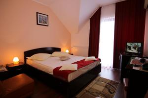Hotel Ciric, Hotel  Iaşi - big - 15