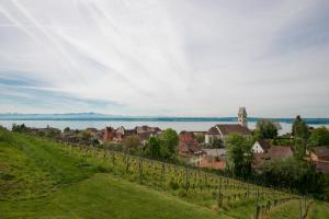 Hotel Villa Seeschau - Adults only, Hotely  Meersburg - big - 55