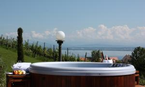 Hotel Villa Seeschau - Adults only, Hotely  Meersburg - big - 66
