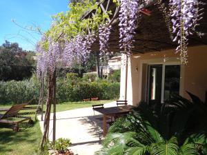 Villa Angelina Jardin, Апартаменты  Гримо - big - 13