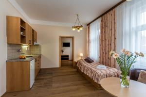 Aparthotel Lublanka, Hotely  Praha - big - 34