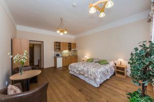 Aparthotel Lublanka, Hotels  Prag - big - 73