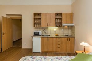 Aparthotel Lublanka, Hotels  Prag - big - 20