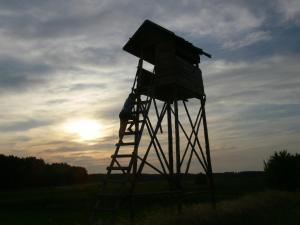 Mazurska Leśniczówka Nowy Zyzdrój, Отели типа «постель и завтрак»  Nowy Zyzdrój - big - 67