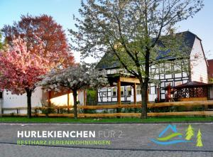 Mein Landhaus - Grosse Ferienwohnung, Apartments  Bad Harzburg - big - 39