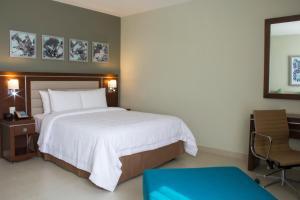 Hampton Inn by Hilton Villahermosa, Отели  Вильяэрмоса - big - 20