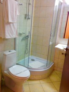 Hotel Ciric, Hotel  Iaşi - big - 13