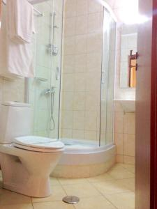 Hotel Ciric, Hotel  Iaşi - big - 8