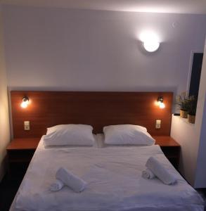 Hotel ELMA, Hotels  Srbsko - big - 21