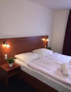 Hotel ELMA, Hotels  Srbsko - big - 7