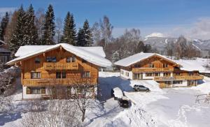 Appartement Hochwurzen, Apartmány  Schladming - big - 1