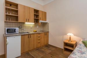 Aparthotel Lublanka, Hotels  Prag - big - 2