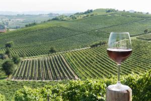 Agriturismo Albarossa, Vidiecke domy  Nizza Monferrato - big - 20