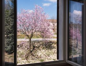 Agriturismo Albarossa, Vidiecke domy  Nizza Monferrato - big - 21