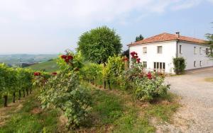 Agriturismo Albarossa, Case di campagna  Nizza Monferrato - big - 36