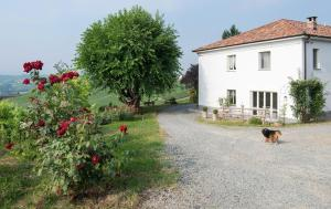 Agriturismo Albarossa, Vidiecke domy  Nizza Monferrato - big - 33