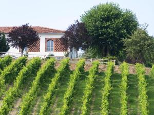 Agriturismo Albarossa, Vidiecke domy  Nizza Monferrato - big - 34