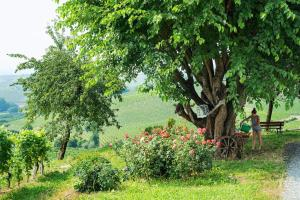 Agriturismo Albarossa, Vidiecke domy  Nizza Monferrato - big - 23