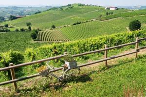 Agriturismo Albarossa, Vidiecke domy  Nizza Monferrato - big - 35
