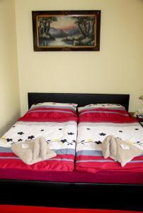Villa Anastazis - Penzion Eden, Guest houses  Karlovy Vary - big - 60