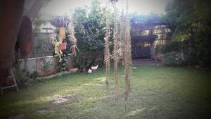 Holiday Home Raz, Appartamenti  Kefar Sava - big - 14