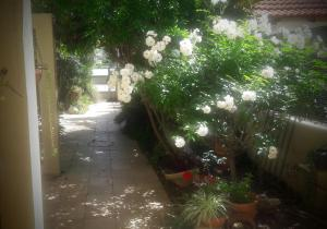 Holiday Home Raz, Appartamenti  Kefar Sava - big - 17