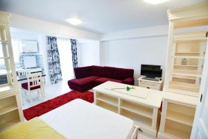 Airport Residence, Apartmány  Otopeni - big - 73