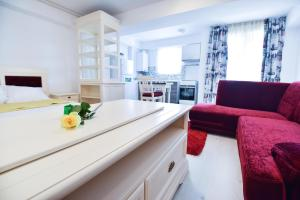 Airport Residence, Apartmány  Otopeni - big - 79