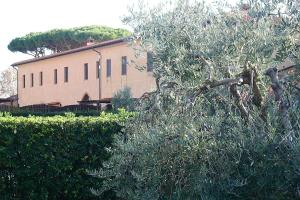 Podere San Giuseppe, Apartmanhotelek  San Vincenzo - big - 85