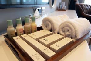 Salzburg Resort, Privatzimmer  Dongshan - big - 16