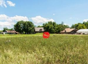 Farm stay Orlov put, Farmházak  Bellye - big - 27