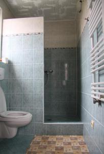 Villa Anastazis - Penzion Eden, Guest houses  Karlovy Vary - big - 53