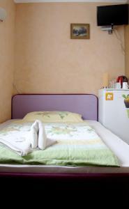 Villa Anastazis - Penzion Eden, Guest houses  Karlovy Vary - big - 52