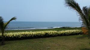 Hotel y Balneario Playa San Pablo, Отели  Monte Gordo - big - 227